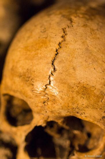Catacombes Paris - DR Nicolas Diolez 2017