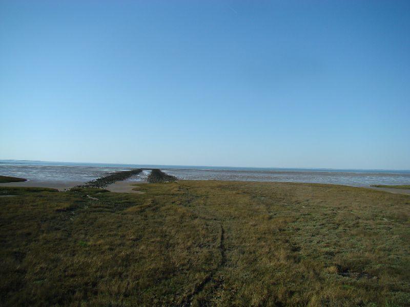 Balade sur l'Estran Saint Jean de Monts - DR Melle Bon Plan