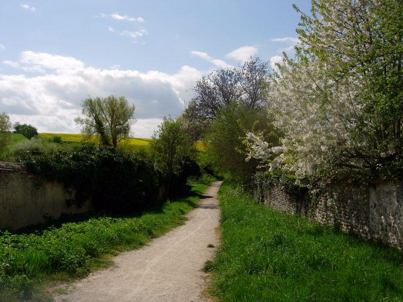 randonnée dans les Yvelines Vert - DR Melle Bon Plan