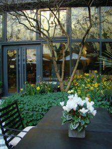 Terrasse du Novotel des Halles - DR Melle Bon Plan