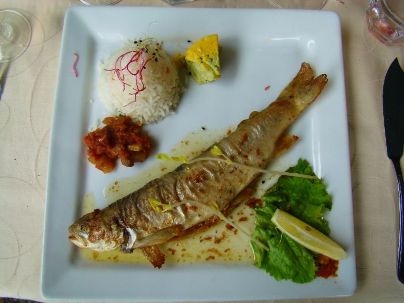 Omble Chevalier restaurant Lac Pavin Sancy Massif du Sancy - DR Melle Bon Plan