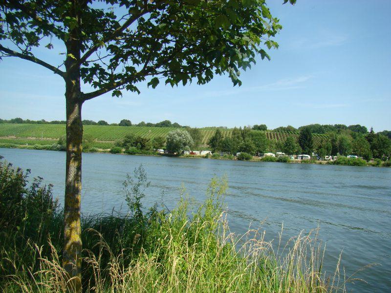 route des vins Moselle Luxembourg - DR Melle Bon Plan