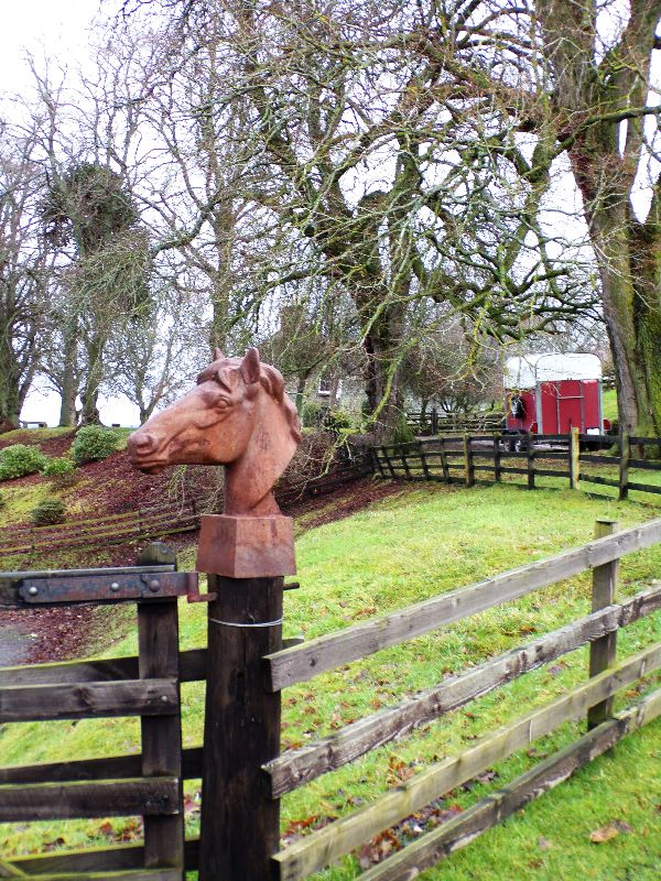 Balade à cheval Inverness - DR Melle Bon Plan 2016