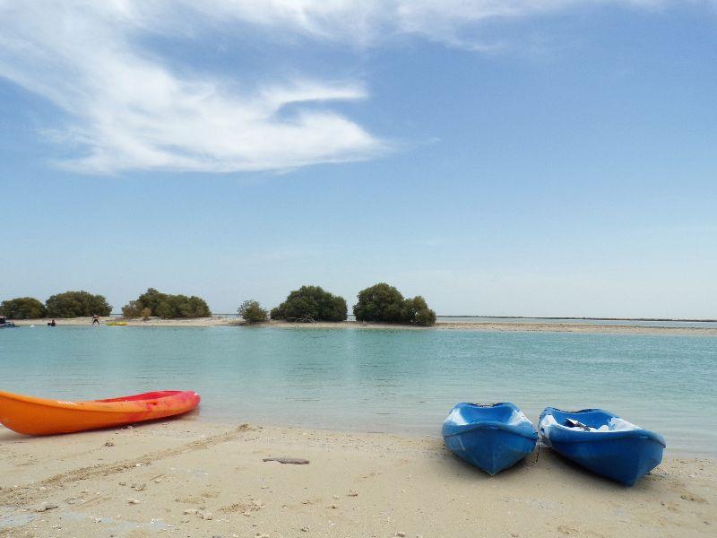 Kayak Mangrove Qatar - DR Melle Bon Plan 2016