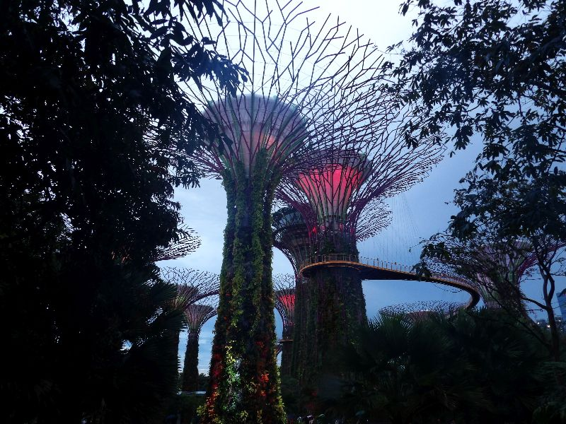 Garden's by the Bay Singapour - DR Melle Bon Plan 2016