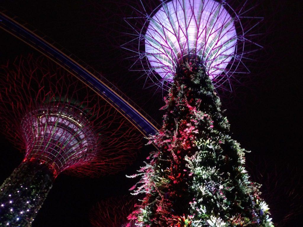 Garden Rhapsody Show Singapour - DR Melle Bon Plan 2016