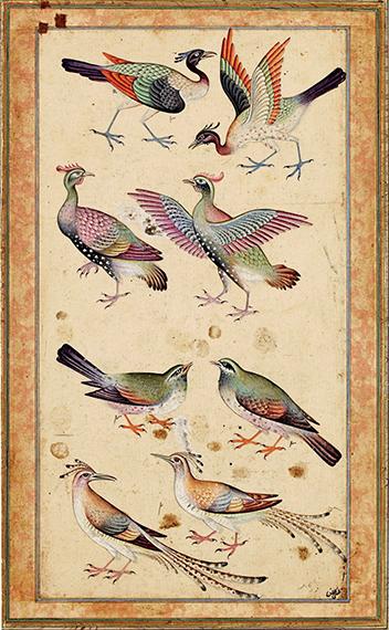 le-cantique-des-oiseaux-de-farid-od-din-attar-1017