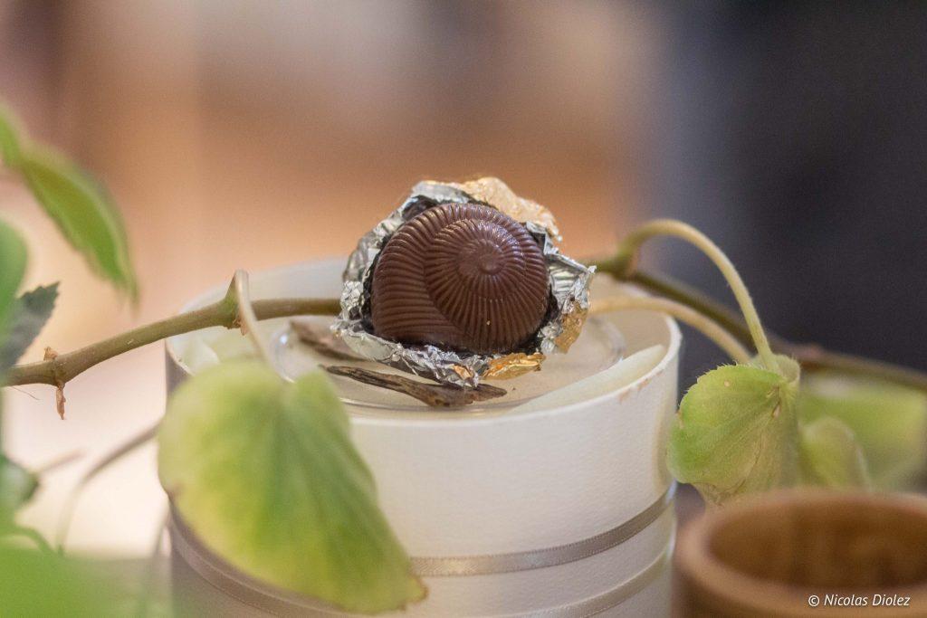 escargot chocolats Lanvin - DR Nicolas Diolez 2016