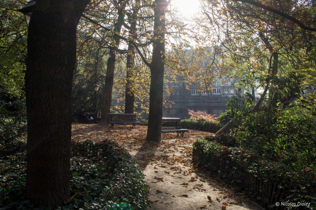 Jardin botanique Bruxelles - DR Nicolas Diolez 2016
