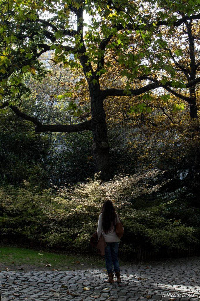 Un week end bruxelles mademoiselle bon plan for Boulevard jardin botanique