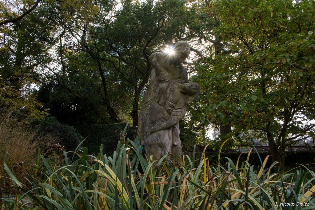 Jardin botanique Bruxelles - DR Nicolas Diolez 20