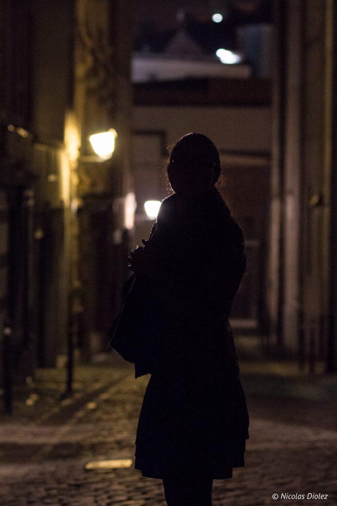 silhouette Bruxelles - DR Nicolas Diolez 2016