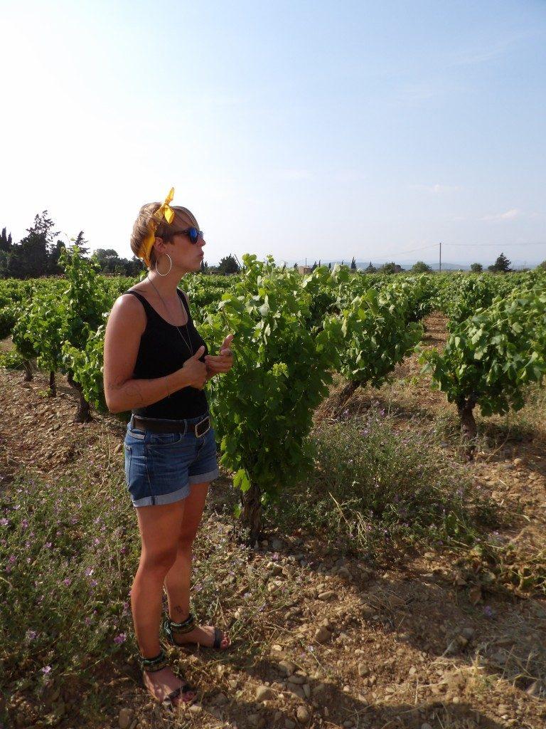 Tour en 2CV avec Vin 4 Heures Tour - DR Melle Bon Plan 2017
