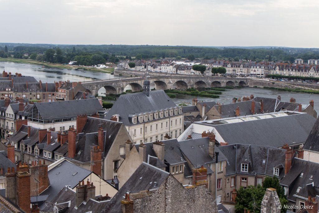 vue du Château de Blois - DR Nicolas Diolez 2017
