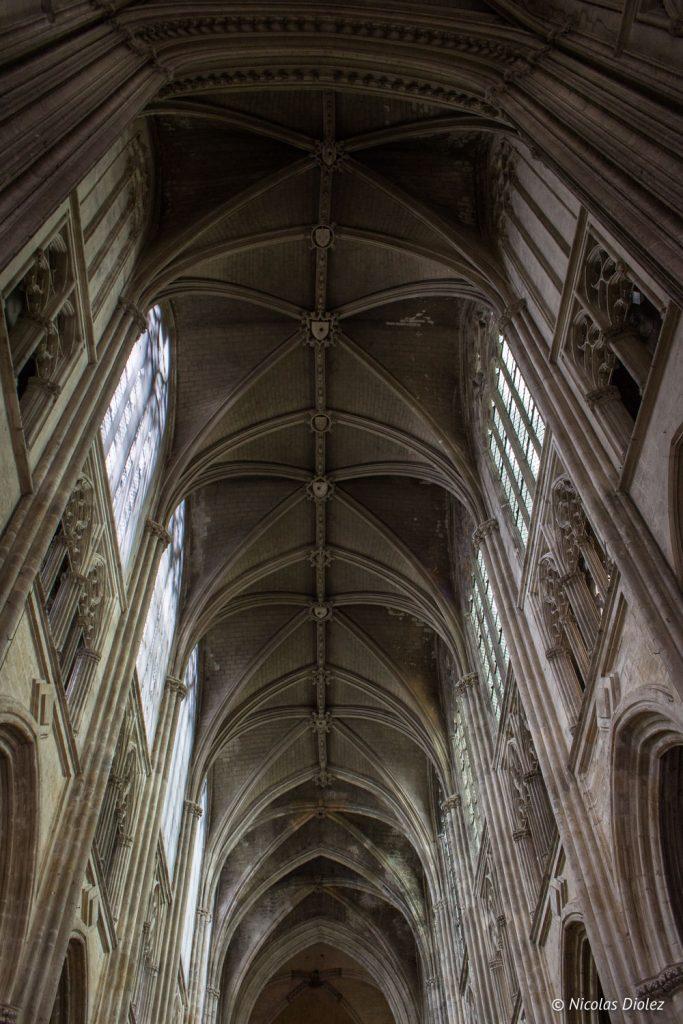 cathédrale Tours - DR Nicolas Diolez 2017