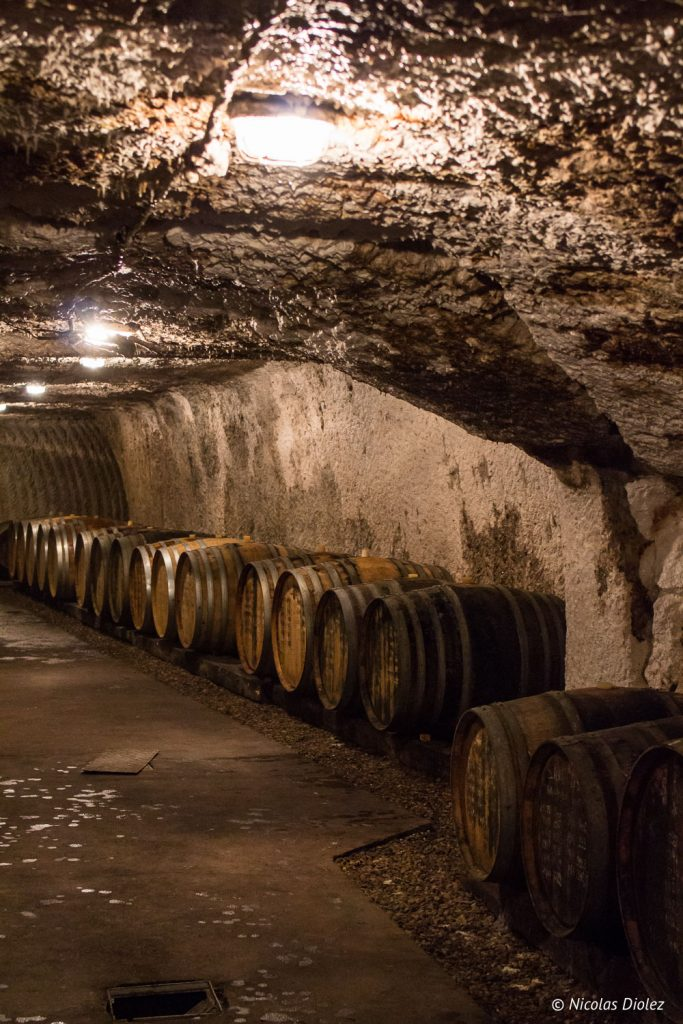 Domaine et Lise et Bertrand Jousset vin Loire - DR Nicolas Diolez 2017