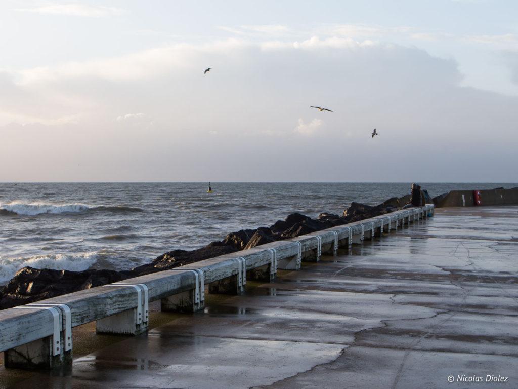 Bord de Mer Ostende Belgique