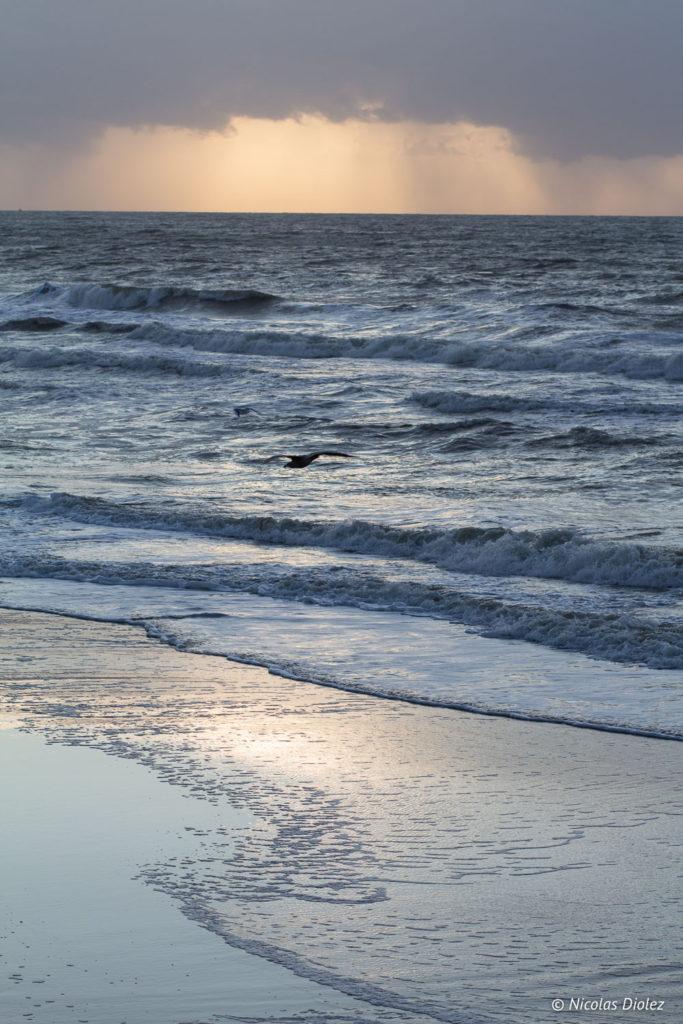 Mer Ostende Belgique