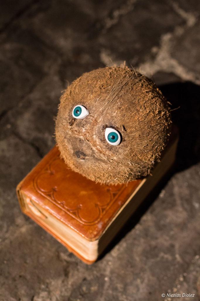 Expo Le Radeau noix de coco avec yeux Ostende Belgique