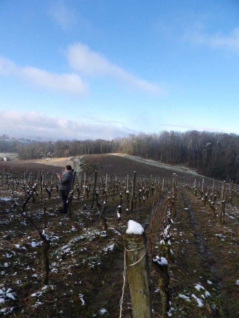 Vignes l'Etoile Percée du Vin Jaune 2018