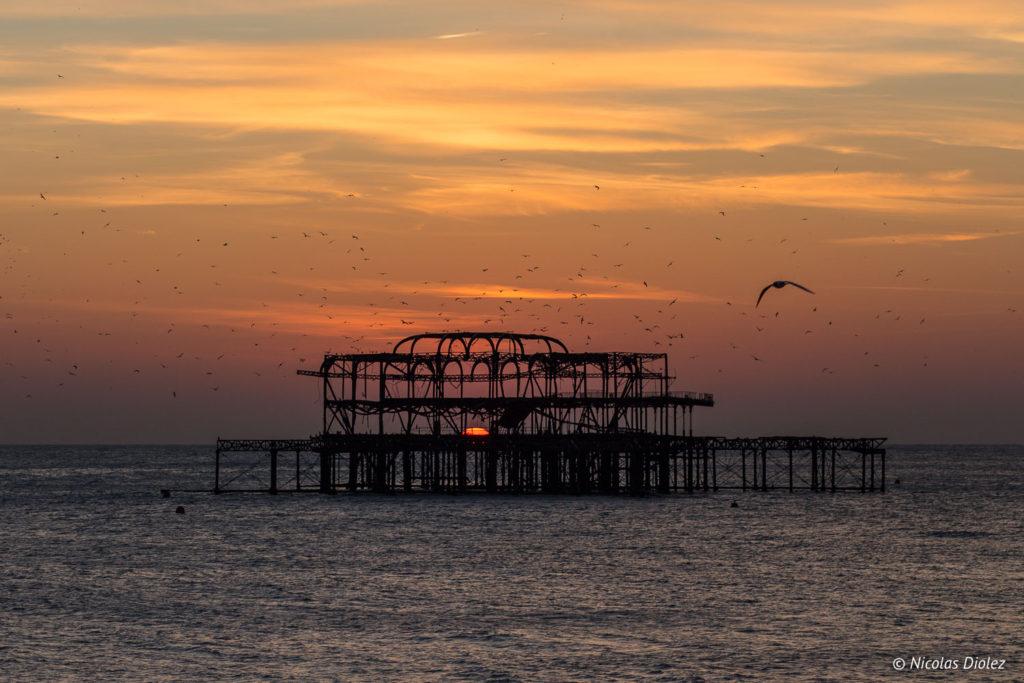 West Pier Brighton - DR Nicolas Diolez 2018