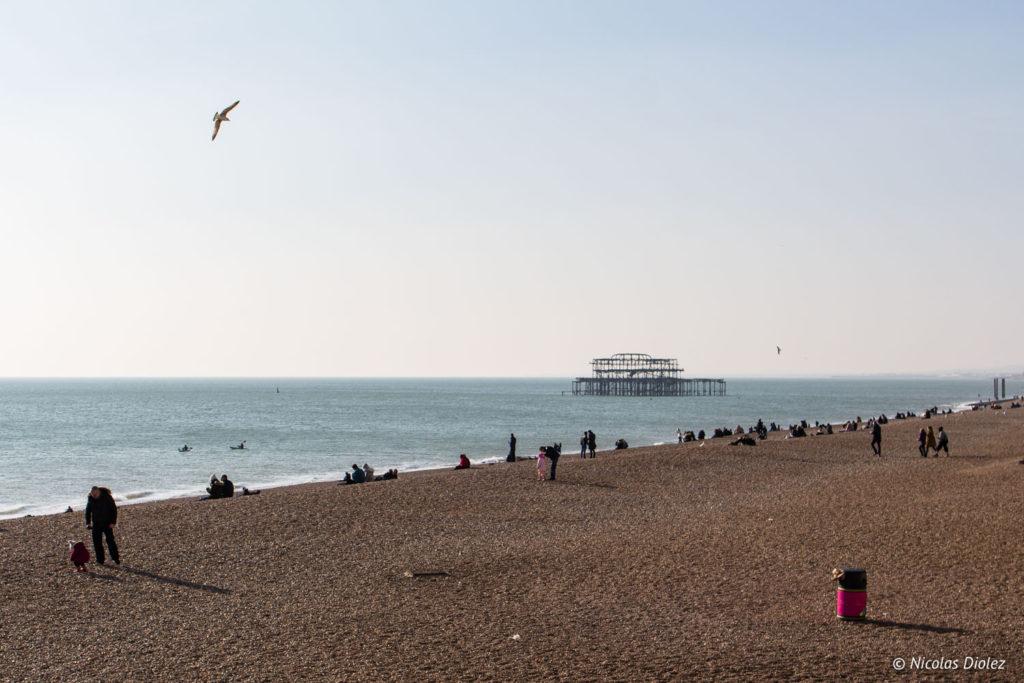 plage mer et West Pier Brighton