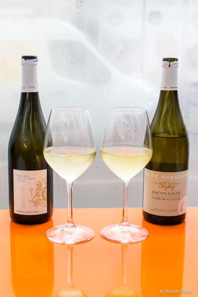 verres de vins La Reine Mer Paris