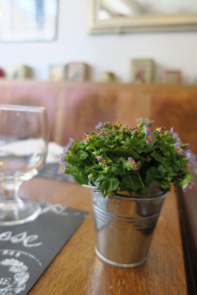 plante Restaurant Les Saisons Cambremer