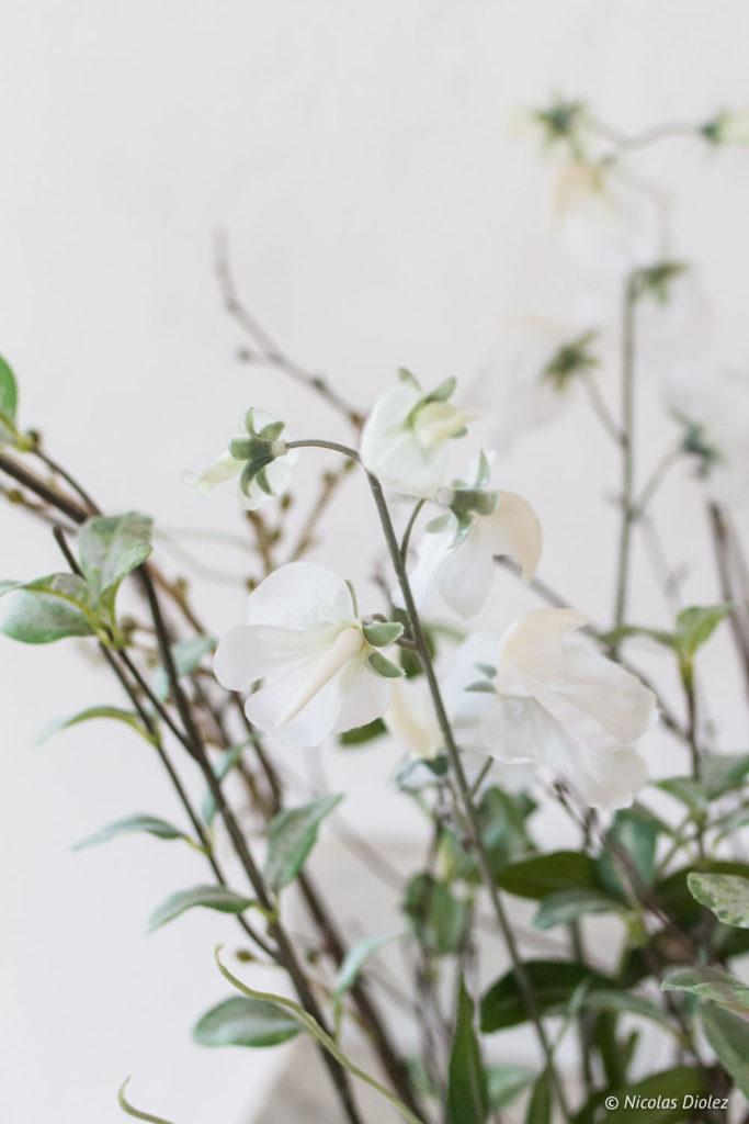 fleurs Chambre d'hôtes la Canotière aux Andelys Eure