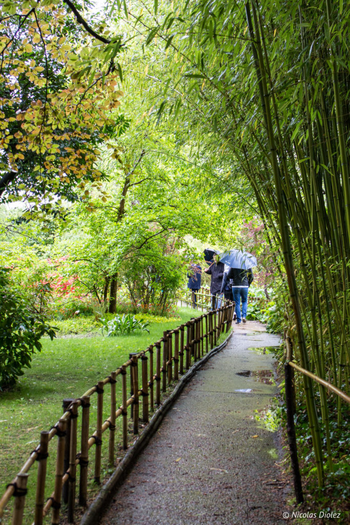 jardin Fondation Monet Giverny Eure Normandie