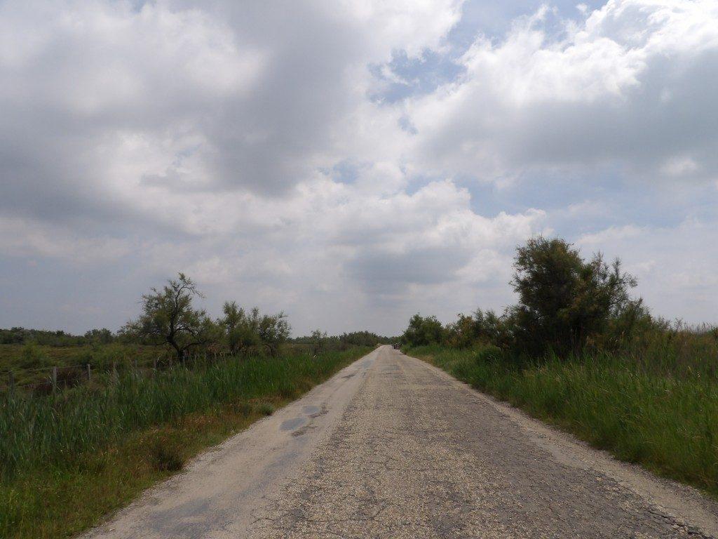 route Camargue