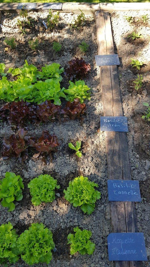 salades Manoir du Lys Bagnoles de l'Orne