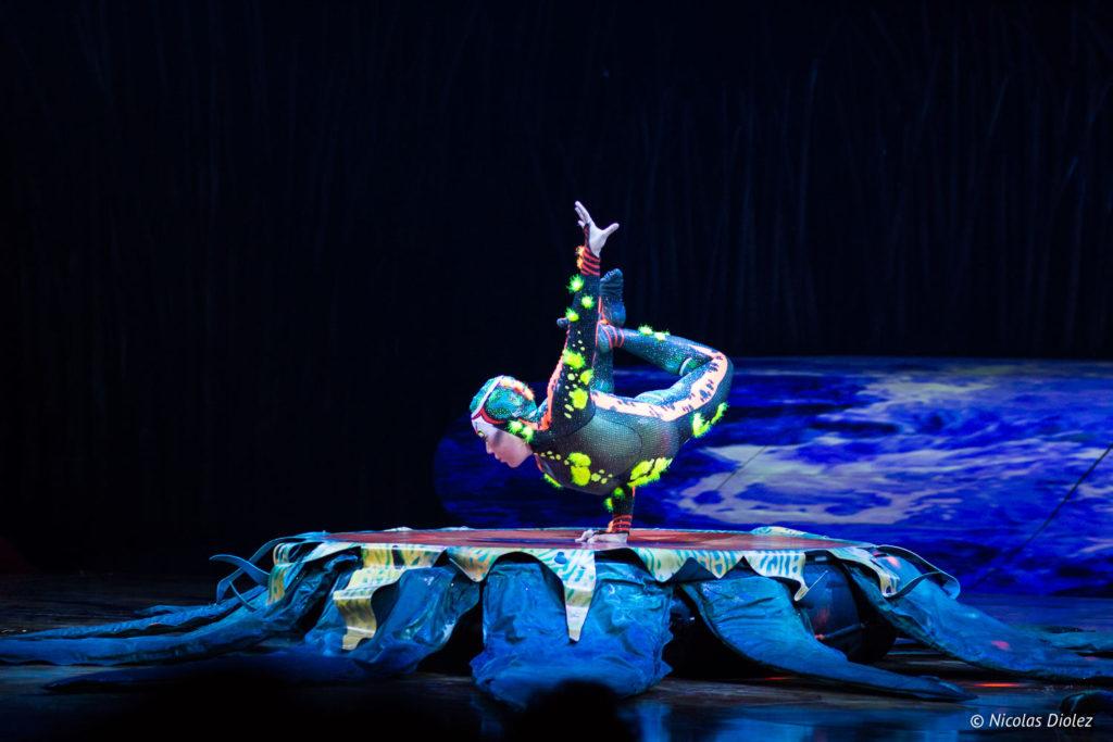 Cirque du Soleil Totem - DR Nicolas Diolez 2018