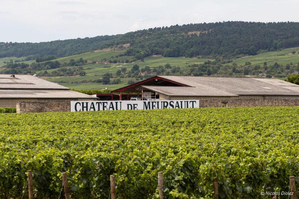 vignes Château de Meursault