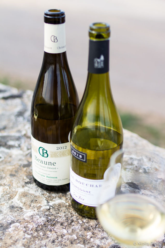 Ecole des Vins de Bourgogne Beaune