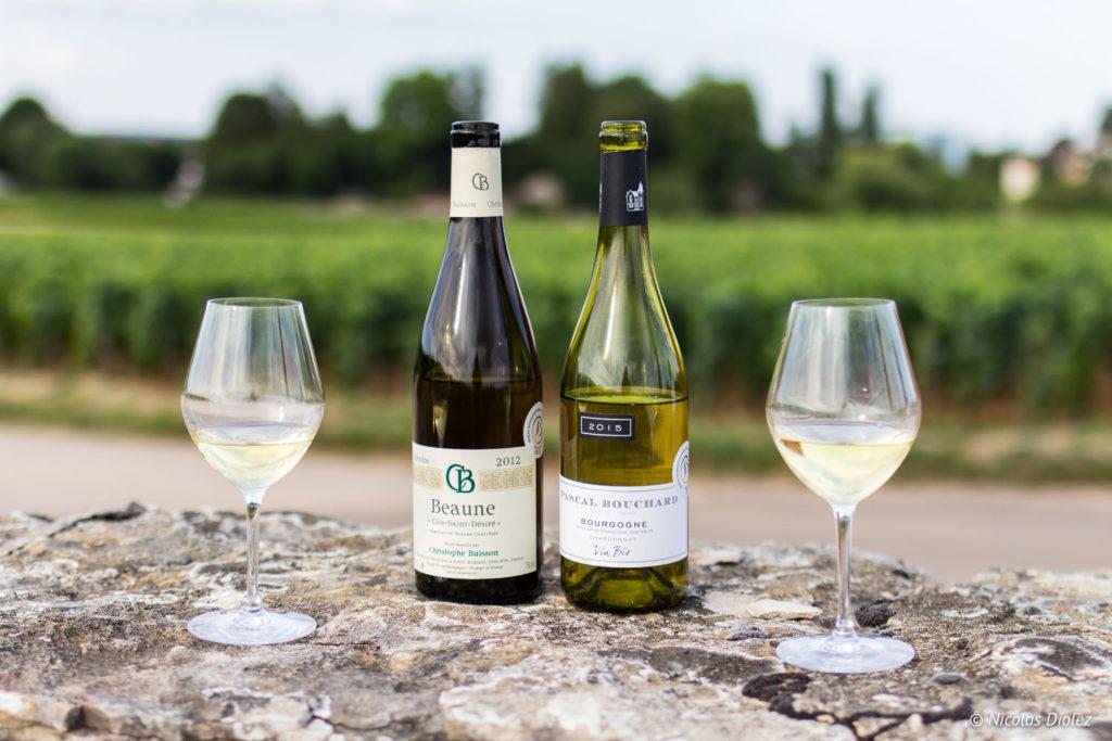 verres bouteilles Ecole des Vins de Bourgogne