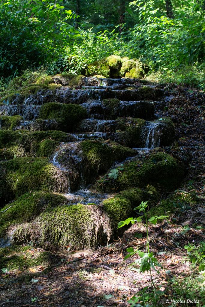 Jardin de Silière Cohons