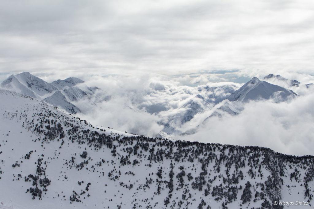 Montagne sapins Saint-Lary Pyrénées