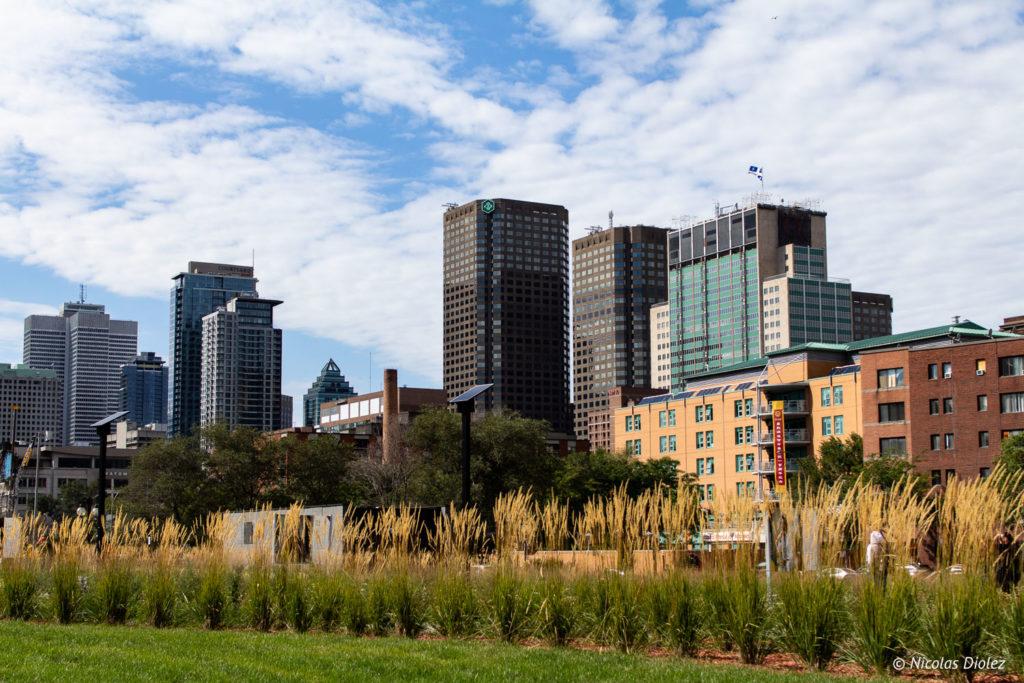 Buildings Montréal