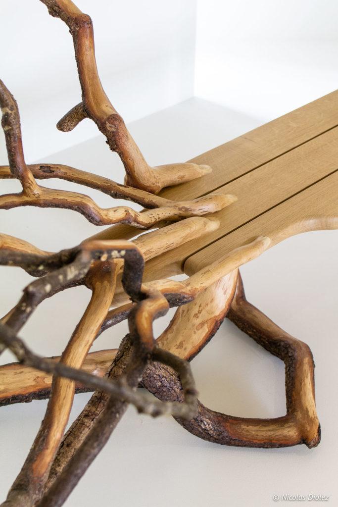 arbre Musée arts déco Marseille