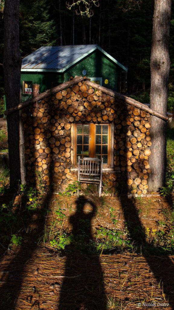 forêt Laurentides Québec