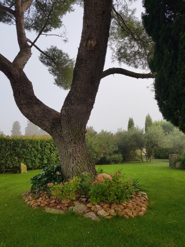 Entre Vigne et Garrigue