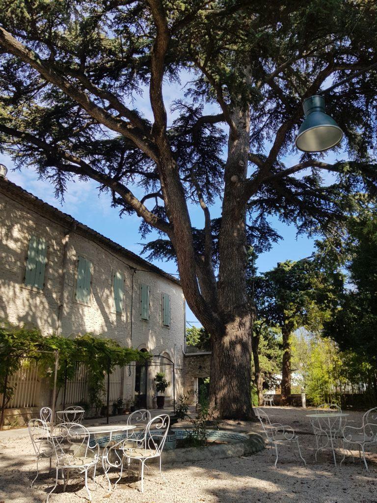 restaurant La Courtille Tavel - DR Melle Bon Plan 2018