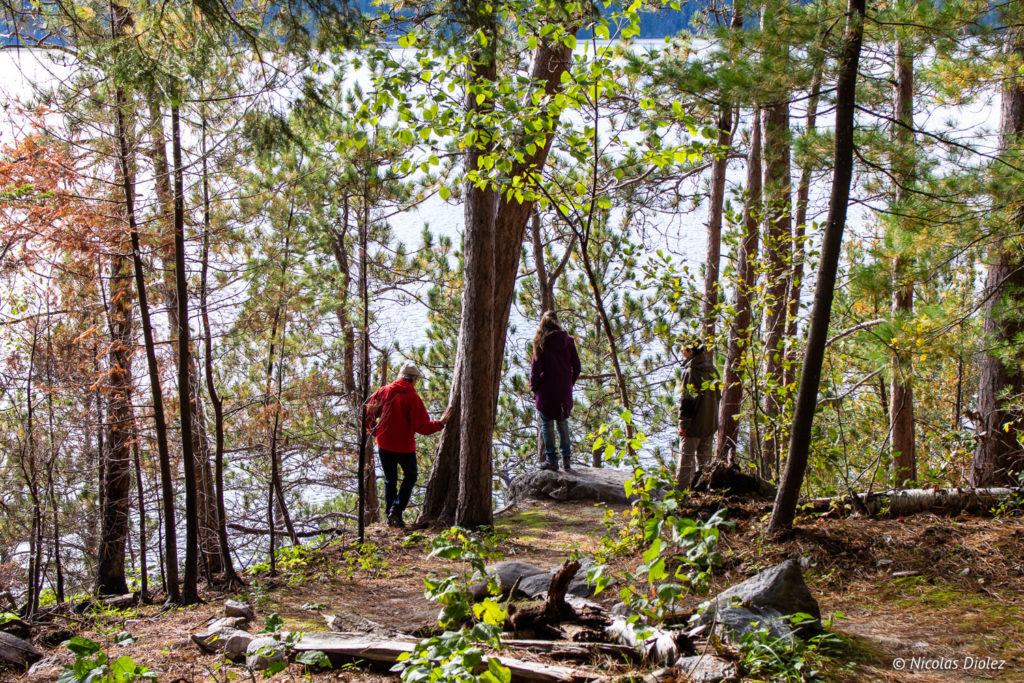 Parc national d'Opémican Abitibi Témiscamingue Québec
