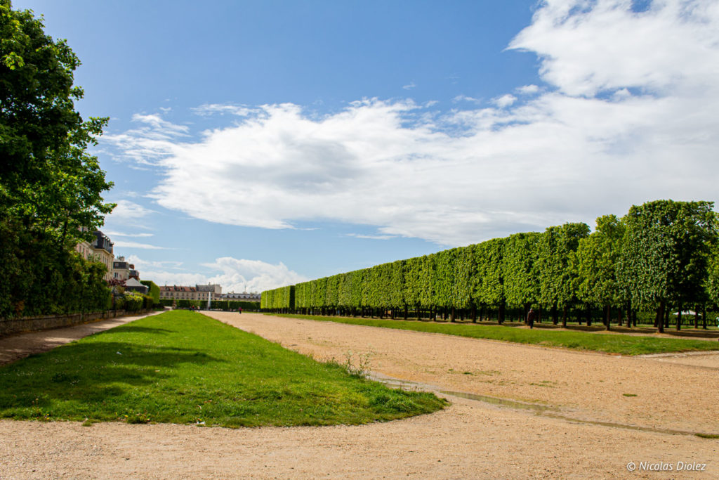 jardin Saint-Germain-en-Laye - DR Nicolas Diolez 2019