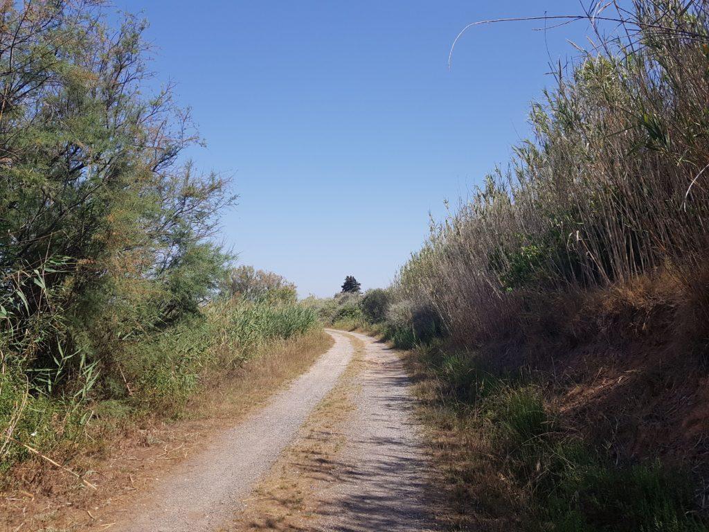 Réserve Naturelle Nationale du Bagnas Cap d'Agde