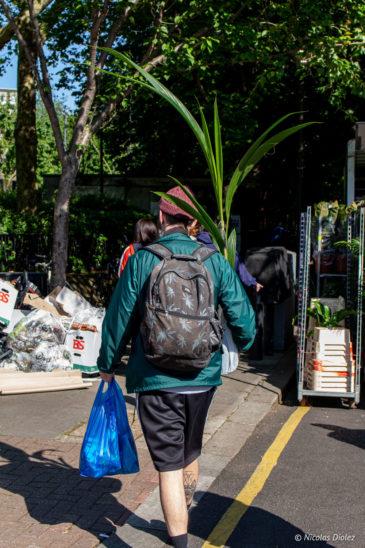 marché fleurs Columbia Road Londres