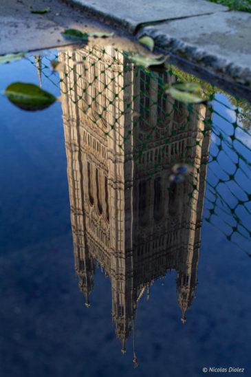 Westminster Londres reflet