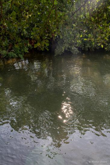 eau Seine
