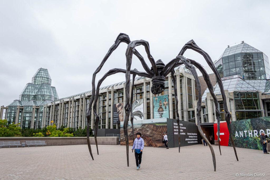 araignée Louise Bourgeois